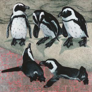 Marc Alexander | African Penguins | Product Image