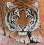 Marc Alexander | Siberian Tiger | Product Image