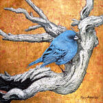 Marc Alexander | Indigo Bunting | The Secret Forest Exhibition
