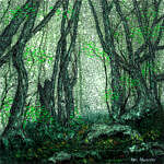 Marc Alexander | Secret Path | The Secret Forest Exhibition
