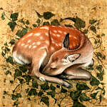 Marc Alexander | Sleeping Fawn | The Secret Forest Exhibition