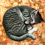 Marc Alexander | Sleepping Cat | The Secret Forest Exhibition